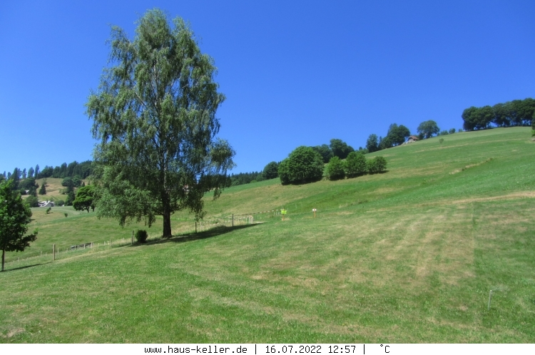 Webcam Todtnau - Brandenberg